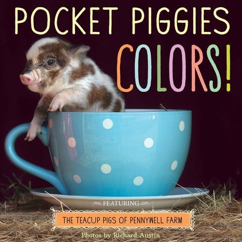 Read Online Pocket Piggies Colours! ebook