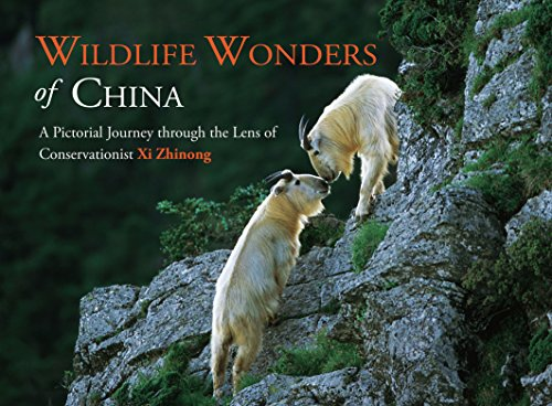 Wildlife Wonders Of China  A Pictorial Journey Through The Lens Of Conservationist Xi Zhinong