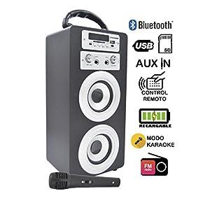 DYNASONIC Enceinte Bluetooth Karaoké Portable série 025 Noir Radio FM, Connexion Bluetooth 2.1, Lecteur SD USB et Microphone 6