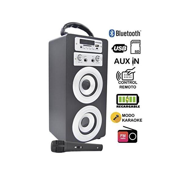 DYNASONIC Enceinte Bluetooth Karaoké Portable série 025 Noir Radio FM, Connexion Bluetooth 2.1, Lecteur SD USB et Microphone 1
