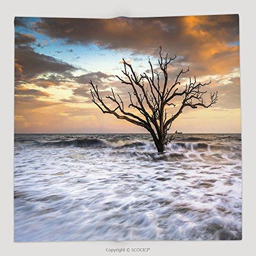 Custom Botany Bay Edisto Island Sc Boneyard Beach Sunset Landscape Charleston South Carolina East Coast 103976852 Soft Fleece Throw Blanket