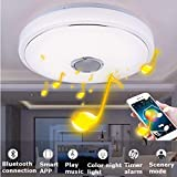 FidgetFidget Ceiling Down Light Lamp with Bluetooth Speaker Music Player