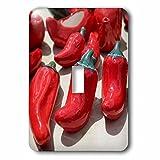 3dRose LLC lsp_92716_1 Chile Salt Pepper Shakers Santa Fe New Mexico Us32 Jmr0851 Julien Mcroberts Single Toggle Switch