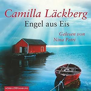 Engel aus Eis Hörbuch