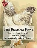 The Brahma Fowl (Chicken Breeds)