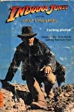 Indiana Jones and the Last Crusade by Lester M. Schulman (1989-05-20)