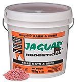 MOTOMCO D 31402 Jaguar Rodenticide Pail Pest Control