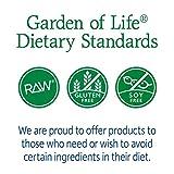 Garden of Life - RAW Probiotics Colon Care