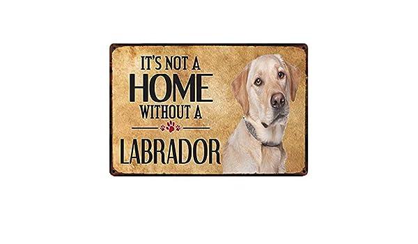 NOT Labrador Dog Placa de Cartel de Chapa Vintage Retro Cartel de ...