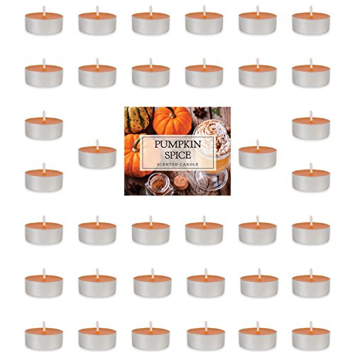 DII Home Traditions Highly Scented Tealight Candle (Pack of 36) For Home Décor, Wedding, Party, Holiday, Spa & Aromatherapy - Pumpkin Caramel