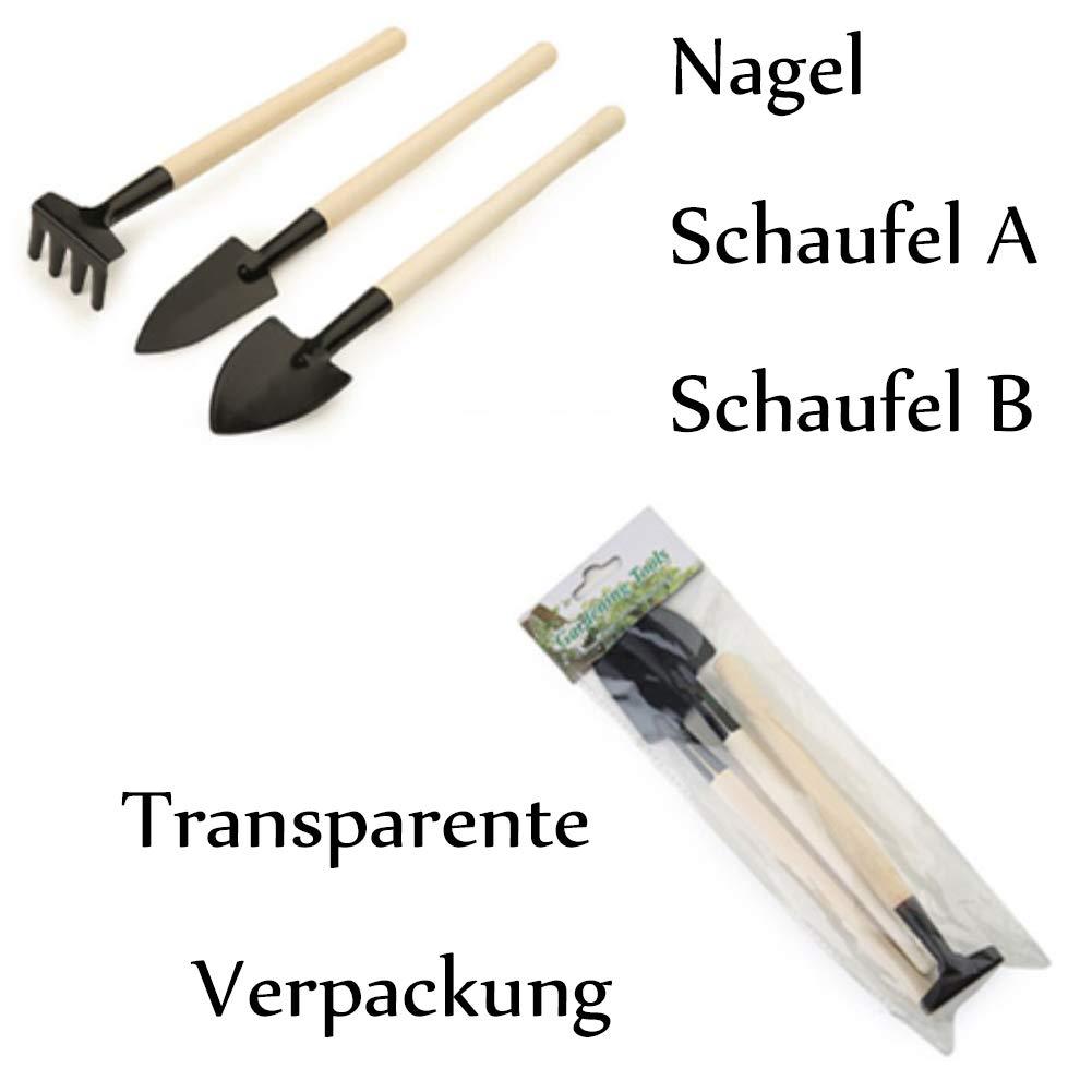 Weanty Lot de 3 mini outils de jardinage avec pelle et pelle /à r/âteau de jardin pour semis bonsa/ï et plantation