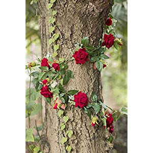 Ling's moment 5.6 FT Long Handcrafted Velvet Artificial Rose Vine Silk Flower Garland Hanging Baskets Plants Valentine's Present Table Runner Home Outdoor Wedding Arch Garden Wall Decor 2