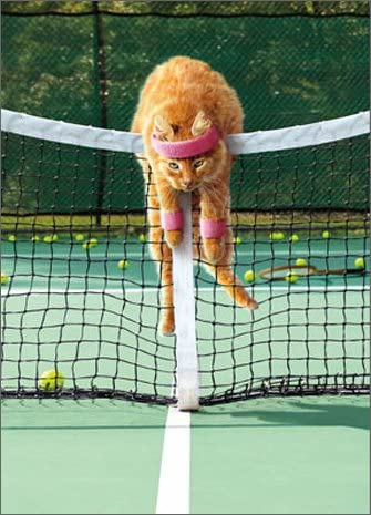 Amazon.com: Cat reproduce Tenis Funny Just For Fun Tarjeta ...