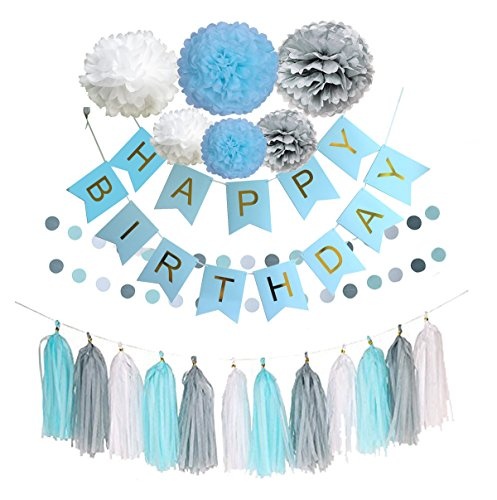 Ipalmay Blue Silver and White Birthday Decoration Set, Blue Happy Birthday Banner, Glitter Polka Dot Garland,Variety of Tissue Pom Poms with Tissue Tassel, Best for Theme Party Decor (Best Theme Parties)
