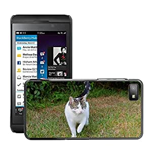 Super Stella Slim PC Hard Case Cover Skin Armor Shell Protection // M00147923 Cat Pets Domestic Cat Spotted // BlackBerry Z10