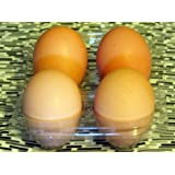 One-Half Dozen Farm Fresh Fertile Free Range Chicken Eggs