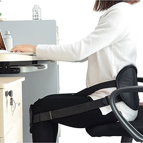 Best Back Support Belt for Office Chair - CHISOFT Adjustable Waist Protector Belt Correct Bad Posture While Sitting- Better Sitting Posture + Prevent Back Pain Relief