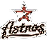 "Houston Astros 12"" VINYL MAGNET"