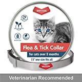 Flea Tick Prevention for Cats - Cat Flea Collars Flea Tick Prevention Cat Flea Treatment Flea Protection Pet Flea Collars Fit All Cats Fleas Ticks for Flea Control Cats