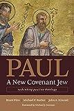 Paul, a New Covenant Jew: Rethinking Pauline