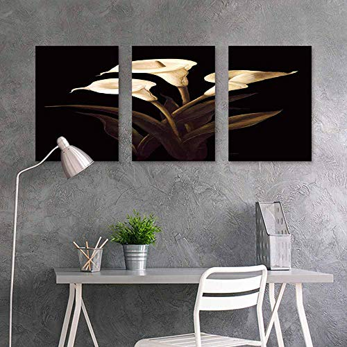 Abstract Oil Paintings Sticker,Black and White Calla Lily Oil Painting for Home Modern Decoration Print Decor,16x31inchx3pcs