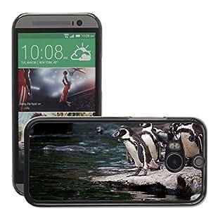 Super Stellar Slim PC Hard Case Cover Skin Armor Shell Protection // M00126896 Animal Animals Antarctica Beaks Bird // HTC One M8