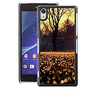 A-type Arte & diseño plástico duro Fundas Cover Cubre Hard Case Cover para Sony Xperia Z2 (Sky Tree Rain Morning Sunrise)