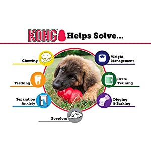 KONG Extreme Dog Toy, X-Large, Black