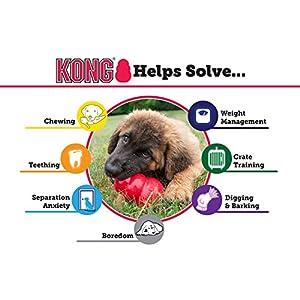 KONG Extreme Dog Toy, X-Large, Black