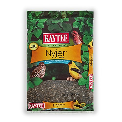 Kaytee Nyjer Thistle Seed (Best Bird Feeder For Niger Seed)