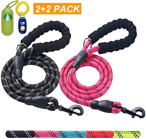 ladoogo Comfortable Padded Reflective leashes