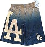 Mens Gradient Big Logo Training Shorts Los Angeles Dodgers (Large/36)