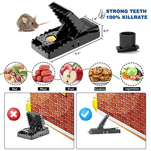 Charlemain Trampa para ratones(juego de 6), ratonera de plástico para interiores y exteriores, trampa para ratas efectiva, fácil de instalar, golpe poderoso,reutilizable, trampas para matar