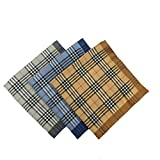 WINDLY Mens 100% Cotton Handkerchiefs with Strips Prints, Soft, Durable & Absorbent - 16x16 inches (6pcs)