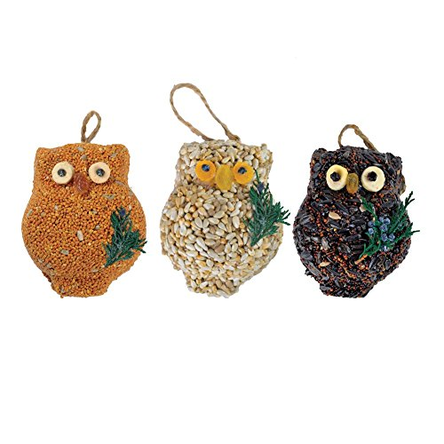 Mr. Bird Owl Bird Seed Ornaments - Bird Seed Cakes (Set of 3) - 3.75