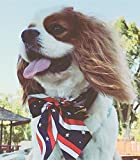 4th of July/July 4 Pet Dog Cat Large Bow Ties