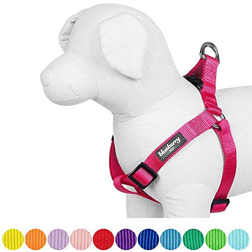 Pig Dog Breeds (Blueberry Pet 12 Colors Step-in Classic Dog Harness, Chest Girth 26