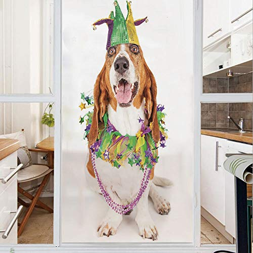 Decorative Window Film,No Glue Frosted Privacy Film,Stained Glass Door Film,Happy Smiling Basset Hound Dog Wearing a Jester Hat Neck Garland Bead Necklace Decorative,for Home & Office,23.6In. by 35.4I (Original Blackouts Neck)