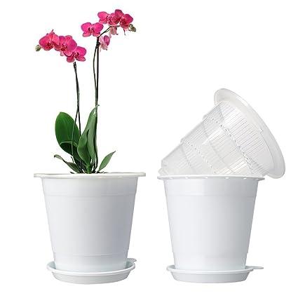Amazon Mkono Plastic Planter Potorchid Pots With Holes Mesh