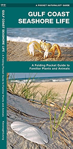 Gulf Coast Seashore Life: A  Folding Pocket Guide to Familiar Plants and Animals (A Pocket Naturalist Guide)