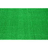 Indoor/Outdoor Carpet Green Artificial Grass Turf Area Rug 12 x 12