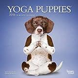 Yoga Puppies 2016 Mini 7x7