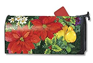 Theobaldjordan Poinsettia Fruit Magnetic Mailbox Cover Magnetic Mail Box Wrap Yard Garden Decor 17.25 X 20.75 Inches
