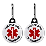 SERVICE DOG IN TRAINING Medical Alert 2-Pack 1 inch Zipper Pull Charms