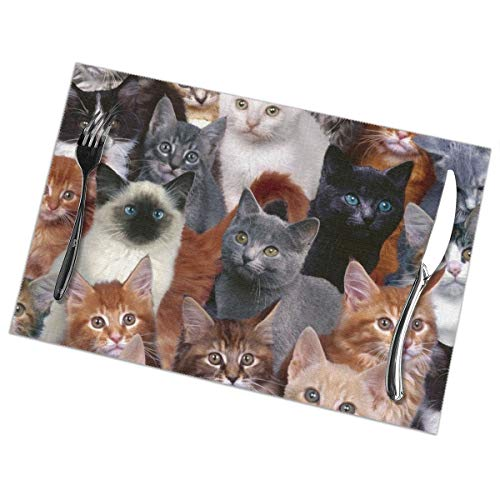 Too Many Cat 6PCS Placemat 12 X 18 Inch Non-Slip Heat-Resistant Washable Easy to Clean Reusable Kitchen Place Mats for Dining Table Banquet Table Kitchen Placemat