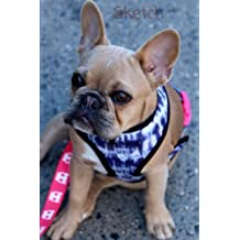 Sketch: French Bulldog, 6 x 9 Sketchbook Journal, Blank Notebook Unlined, Paper for Drawing, Writing, Doodling, Sketching (Art Sketch Pad), 100 Durable Unruled Pages