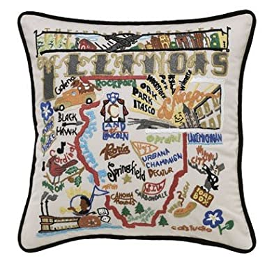 Illinois State Pillow by Catstudio