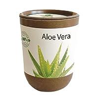Feel Green Ecocan Specials, Idée Cadeau (100% Biodégradable), Grow-Your-Own/Kit Prêt-à-Pousser, Le Pot Écologique Qui Croît 9 x 7 cm, Produit en Autriche