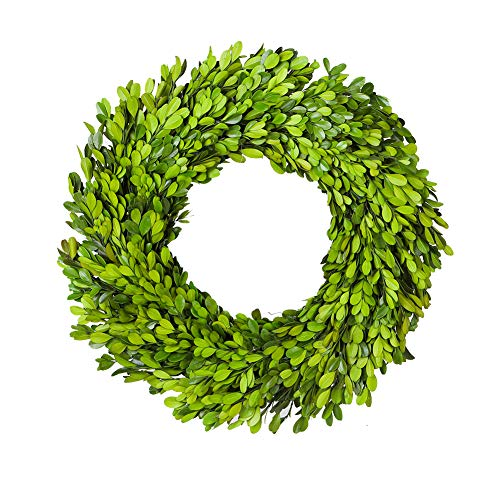 BoxwoodValley Real Preserved Boxwood Wreath Green Garland for Indoor Wall Window Party Decor(Wreath, 11