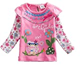 Neat Girls Pretty Bright Quality Dresses Tunic T Shirts Sale (18-24m, Pink Owl L316)